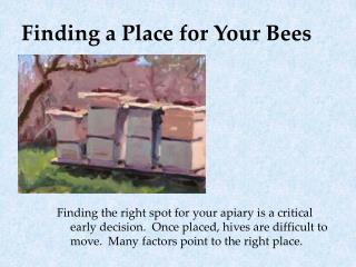 Finding a Place for Your Bees