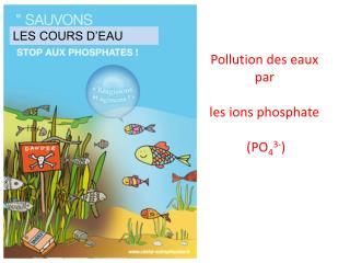 Pollution des eaux par les ions phosphate  (PO 4 3- )