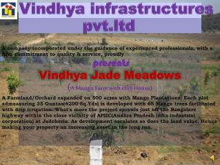 Vindhya infrastructures pvt.ltd