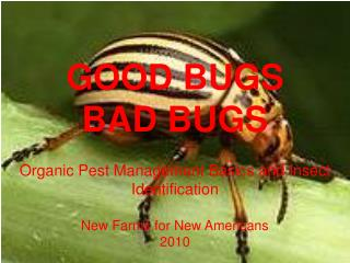 GOOD BUGS BAD BUGS Organic Pest Management Basics and Insect Identification