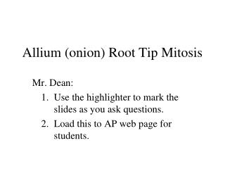 Allium (onion) Root Tip Mitosis