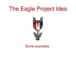 The Eagle Project Idea