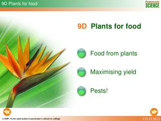 9D Plants for food