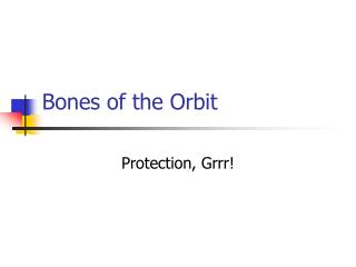 Bones of the Orbit