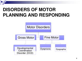 DISORDERS OF MOTOR PLANNING AND RESPONDING