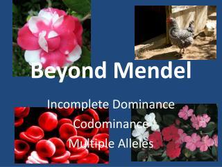 Beyond Mendel