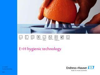 E+H hygienic technology