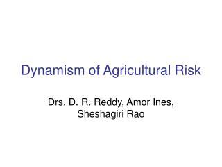 Dynamism of Agricultural Risk