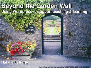 Beyond the Garden Wall