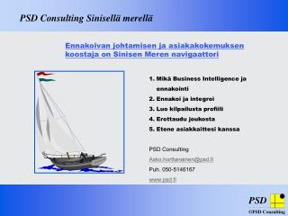 PSD Consulting Sinisell� merell�