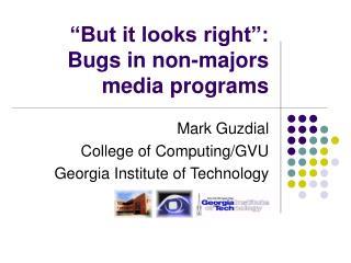 �But it looks right�: Bugs in non-majors media programs