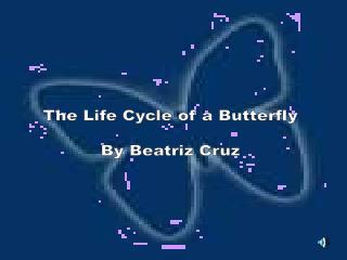 The Life Cycle of a Butterfly By Beatriz Cruz