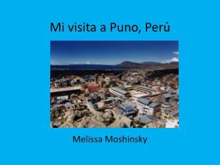 Mi visita a Puno, Per ú