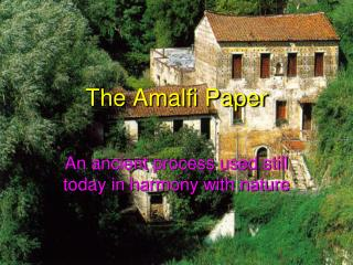 The Amalfi Paper