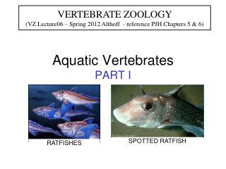 Aquatic Vertebrates PART I