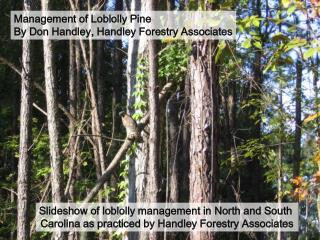 Management of Loblolly Pine By Don Handley, Handley Forestry Associates