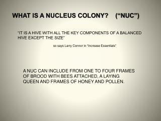 "WHAT IS A NUCLEUS COLONY?    (""NUC"")"
