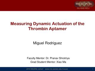 Measuring Dynamic Actuation of the Thrombin Aptamer