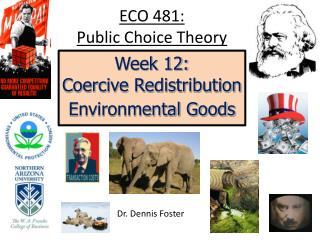 essay on public choice theory