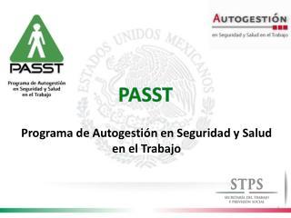 Programa de Autogesti�n en Seguridad y Salud en el Trabajo