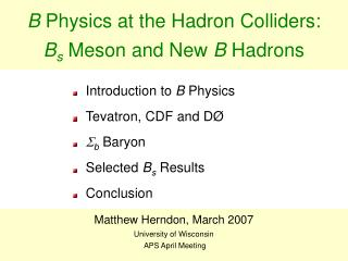 B  Physics at the Hadron Colliders:  B s  Meson and New  B  Hadrons