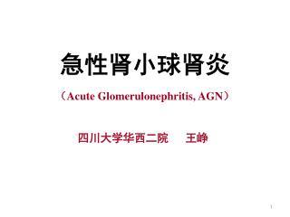 急性肾小球肾炎 ( Acute Glomerulonephritis, AGN ) 四川大学华西二院   王峥