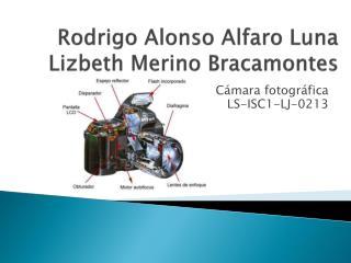 Rodrigo Alonso Alfaro Luna Lizbeth Merino Bracamontes
