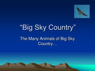 """Big Sky Country"""