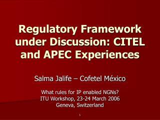 Regulatory Framework under Discussion: CITEL and APEC Experiences