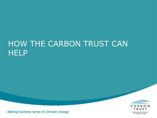 HOW THE CARBON TRUST CAN HELP