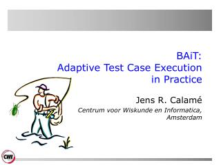 BAiT:  Adaptive Test Case Execution in Practice