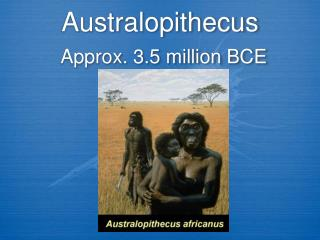 Australopithecus Approx. 3.5 million BCE