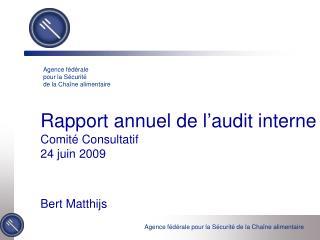Rapport annuel de l'audit interne Comité Consultatif 24 juin 2009