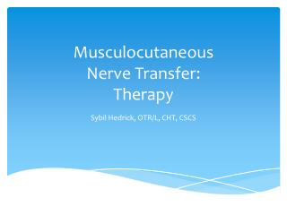 Musculocutaneous Nerve Transfer: Therapy
