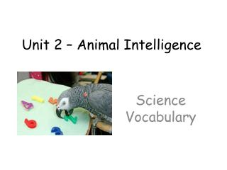 Unit 2 � Animal Intelligence