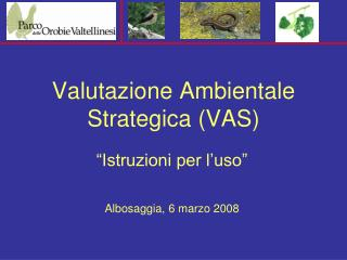 Valutazione Ambientale Strategica (VAS)