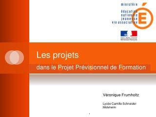 Les projets dans le Projet Prévisionnel de Formation