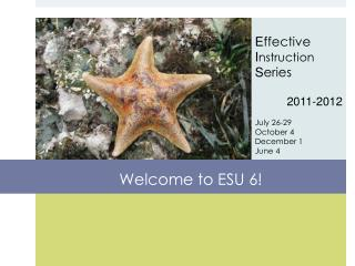 Welcome to ESU 6!
