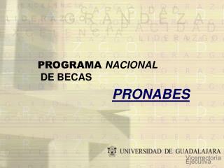 PROGRAMA  NACIONAL DE BECAS