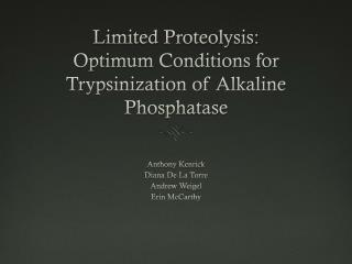 Limited Proteolysis: Optimum Conditions for Trypsinization of Alkaline Phosphatase