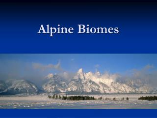 Alpine Biomes