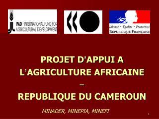 PROJET D ' APPUI A  L ' AGRICULTURE AFRICAINE – REPUBLIQUE DU CAMEROUN