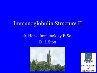 Immunoglobulin Structure II