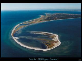 Beauty -  Måkläppen  Sweden