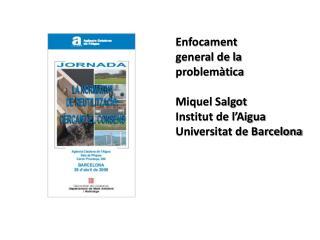 Enfocament  general de la problemàtica Miquel Salgot Institut de l'Aigua Universitat de Barcelona