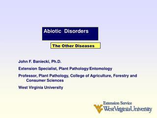 Abiotic  Disorders