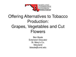 Offering Alternatives to Tobacco Production:  Grapes, Vegetables and Cut Flowers