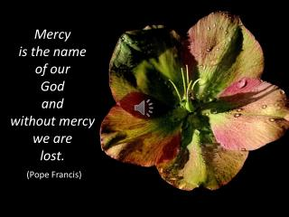 Mercy  is  the name  of  our  God  and  without  mercy  we  are  lost. (Pope Francis)