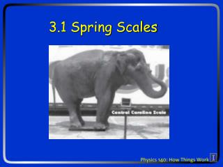 3.1 Spring Scales