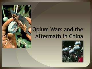 The Opium Wars and the Aftermath in China